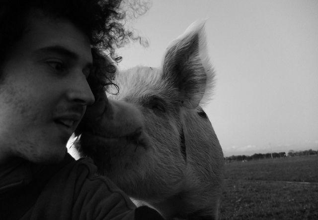 5 причин стать вегетарианцем - http://lifehacker.ru/2014/09/11/5-prichin-stat-vegetariancem/