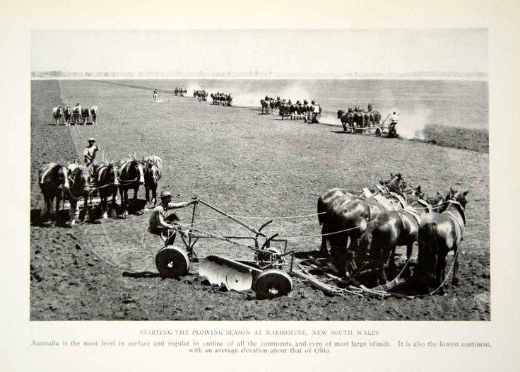 1916 Print Farmers Narromine New South Wales Australia Landscape Historical YNG1