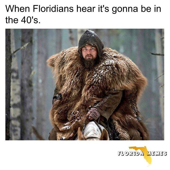 Florida humor                                                                                                                                                                                 More