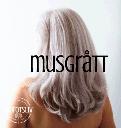 """Det har igen varit på tapeten i finländskmediakring hårfärger och hur vanliga kommersiella hårfärger ställer till det för vår hälsa och miljö. (Se:""""Ingen hårfärg på unga under 16 år""""…"""