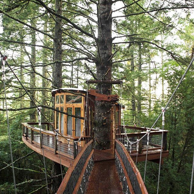 """""""Bizarre travel plans are dancing lessons from God."""" ― Kurt Vonnegut. Best case scenario, those plans will put you in this treehouse available through @hipcamp. We can confirm, it is awesome, but that's a story for another day. Enjoy the weekend. #seeyououtthere"""