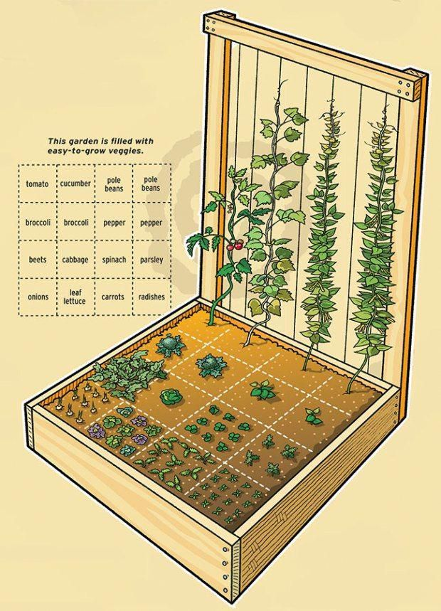 You Can Grow Lots Of Food In A Small Space By Placing Plants Close Together In Squares Instead Vegetable Garden Beds Raised Herb Garden Vegetable Garden Design