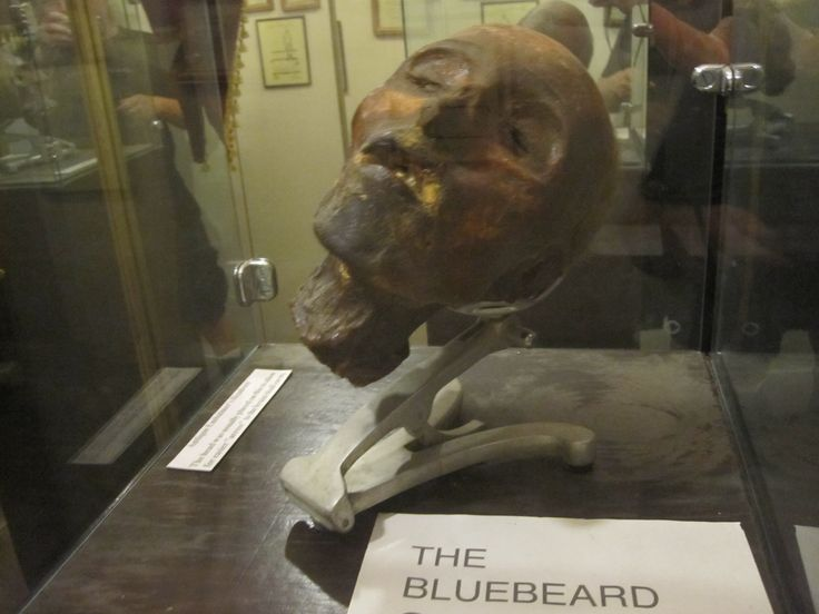 Head of Henri Landru, Museum of Death, Los Angeles