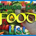 guinea pig food list, love it... No more potatoes for Jellybean though
