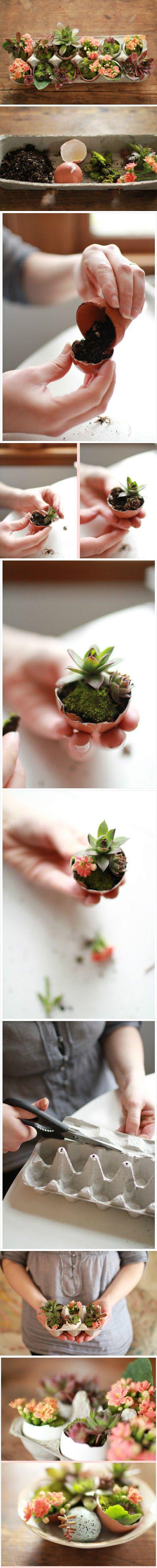 Mini Garden in Eggshells   iCreativeIdeas.com Follow Us on Facebook --> https://www.facebook.com/icreativeideas