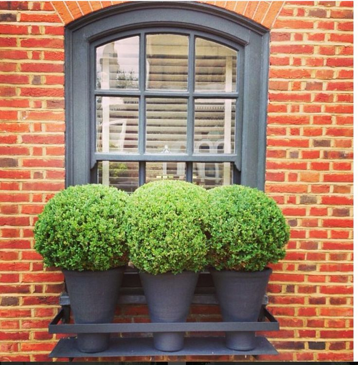 My favourite exterior palate, red brick, deep grey trim, and bright green!