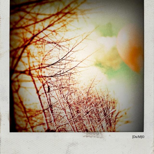 INVERNO Come un inverno, freddo e desolato, cammino in questo mondo dì un solo colore cercando il suono del vento.  Ascolto albe e tramonti.  Trasporto anime.  O sono le anime che trasportano me.  Unico.   http://paralleluniverseinpolaroid.wordpress.com