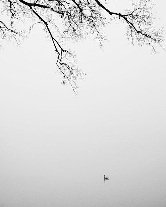 black and white photography, minimalist, minimalism, fog, tranquil, landscape, nature, 11 x 14 print