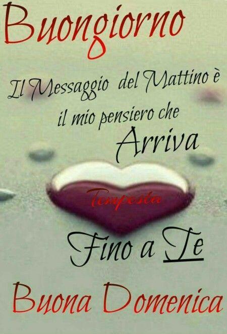 47 best ideas about buongiorno buona domenica on pinterest for Buongiorno divertente sms