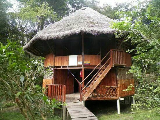 our bamboo hut in the cuyabeno jungle - Ecuador april '13