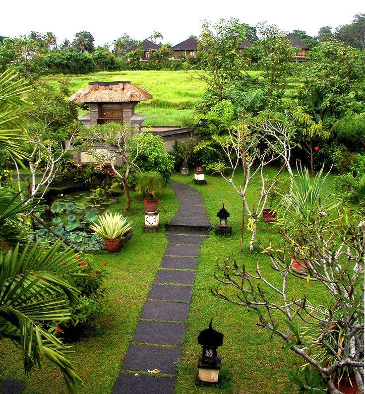 jardin bali - Bing Images