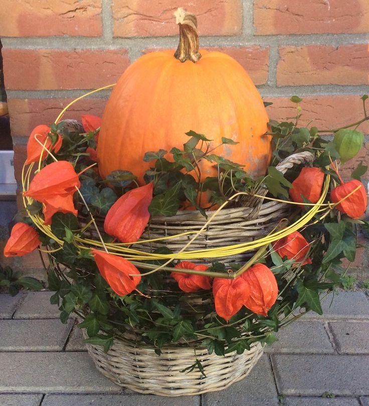 Herbstzeit!  Man braucht einen Korb, Erde, Efeu, Lampionblumen und einen Kürbis. In den Korb wird eine Schale gestellt, damit der Kürbis darauf gelegt werden kann. Efeu rundum pflanzen und mit Lampionblumen dekorieren.