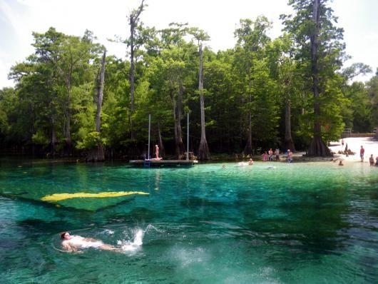 27 Best Morrison Springs Park Images On Pinterest