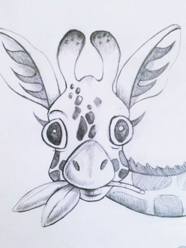 cool drawings animal simple sketches kill