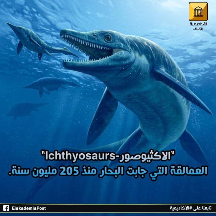 الإكثيوصورات Ichthyosaurs هي زواحف بحرية عاشت ما بين 95 إلى 250 مليون سنة مضت الزواحف التي كان يبلغ حجمها مثل حجم الحيتان الزرقاء سبحت قبالة ال Earth Science