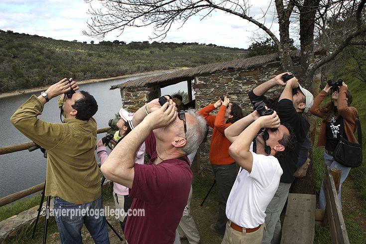 Aficionados a la ornitología en el Mirador de Portilla del Tiétar. Observación de aves. Monfragüe. Cáceres. Extremadura. España. www.siempredepaso.es