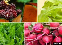 7 May Superfoods...: Green Food, Healthiest Food, Superfood Super, Food Info, Bike Riding, Seasons Superfood May, In Seasons, Spring Superfood, Healthy Living