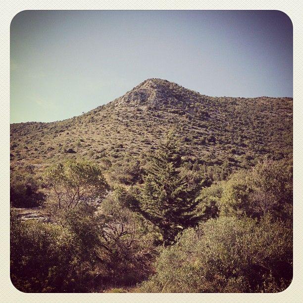 Il Monte Penna dal Parco Archeologico di Monte Cotrozzi