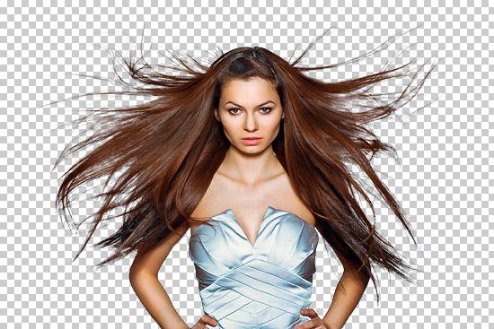 Freistellungstechniken für Haare und Fell - Dr. Web