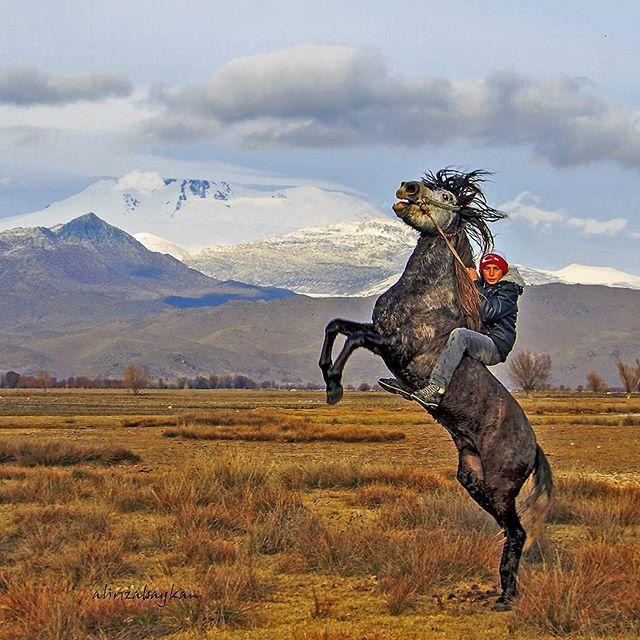"""""""At, Türk'ün kanadıdır""""  Fotoğrafı gönderen: Ali Rıza Baykan"""