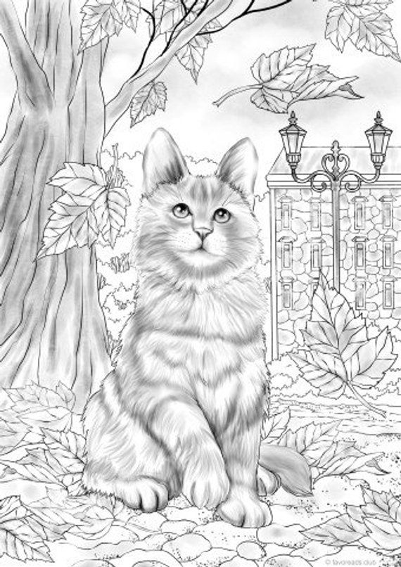 Autumn Kitty Printable Adult Coloring Page From Favoreads