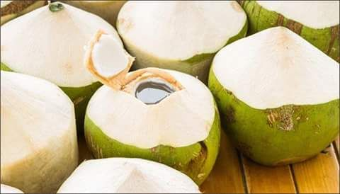 Here is why you should drink coconut water   Who doesn't like to have a sip of coconut water? Well everyone does as it is considered as one of the healthiest drinks and also gives many health benefits. We all might be consuming this healthy drink but might not know the benefits it gives to our body.  It is an excellent drink for diabetic people as it helps them to keep their sugar levels in control.  Helps digestion  As coconut water is rich in fiber which is essential for our digestive..