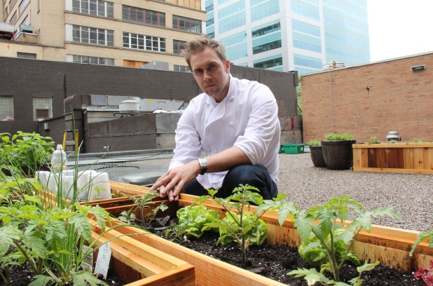 Downtown Calgary restaurant creates 'rooftop ecosystem'