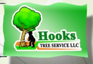 Hooks Tree Service LLC, Raleigh, NC