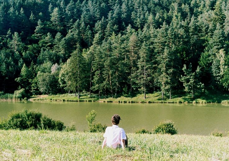 nature, forest, trees, holiday, summer, man