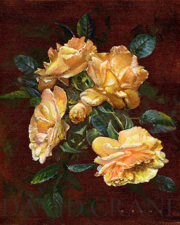 Visit colorful flower paintings gallery by artist David Crane. Amazingly depicted textures by worldwide reknown nature artist