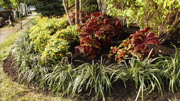 Landscape Ideas Full Sun Perennials Garden