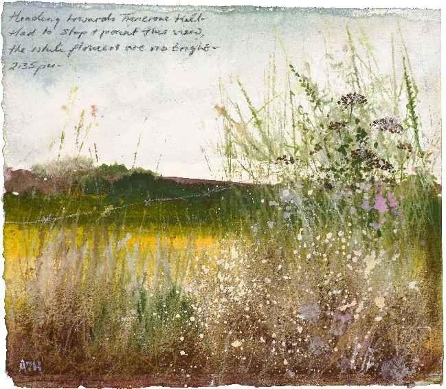 Amanda Hoskin - Heading towards Trencrom Hill