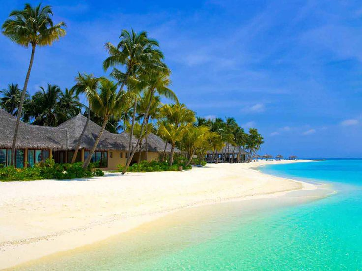 Attractive and exiting kerala beach tours packages which highlights amazing natural beauty of kerala beaches. bit.ly/travelkeralabeaches
