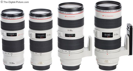 All 4 current Canon 70-200mm L Lenses - Aren't they a beautiful sight?