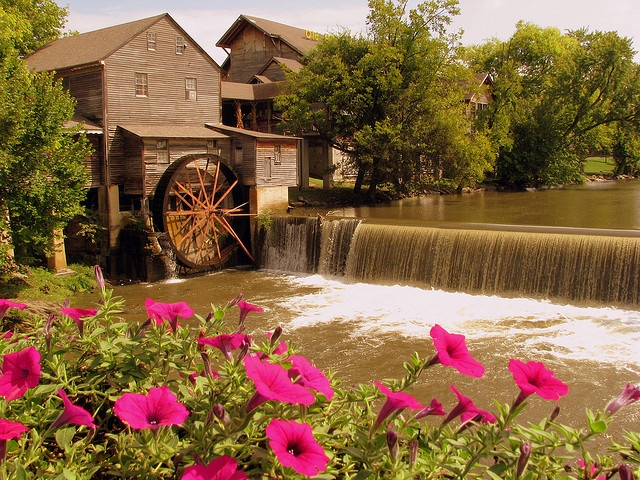 The old mill pigeon forge great restaurant and as you for Mountain flower cabin pigeon forge