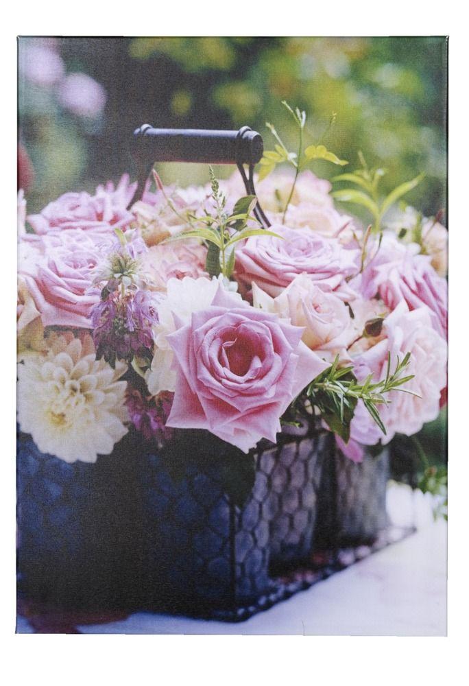 Tuinschilderij Roos