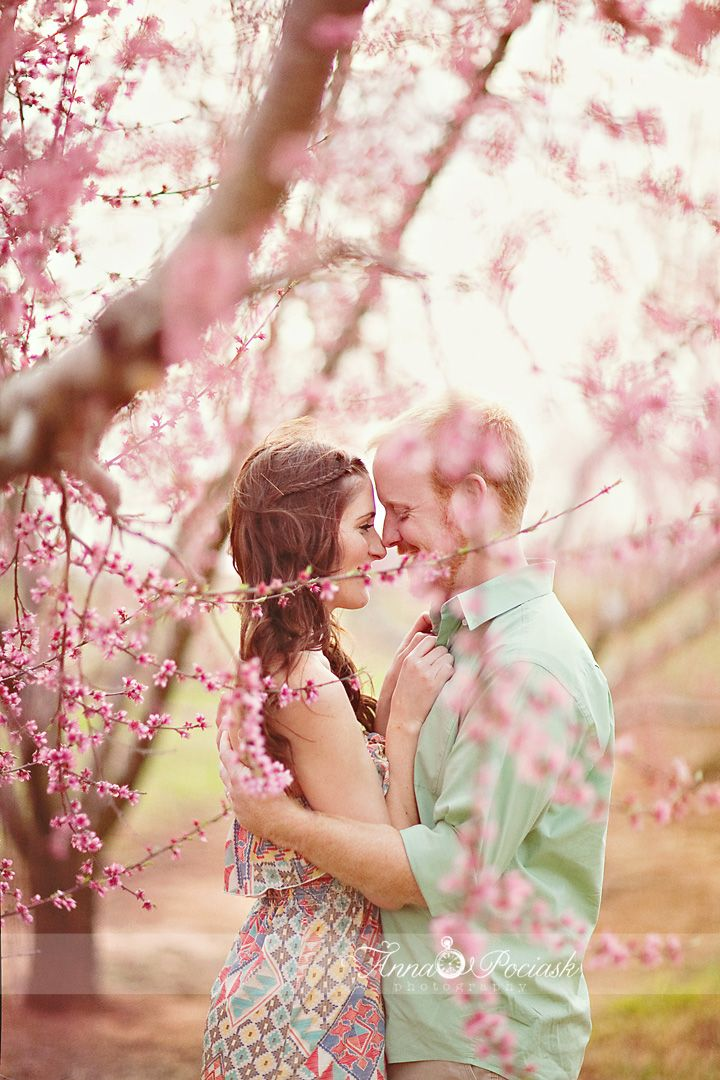 anna pociask photography. spring. orchard. couples photography.