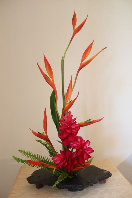 Material heliconia alpinia purpurata red ginger and
