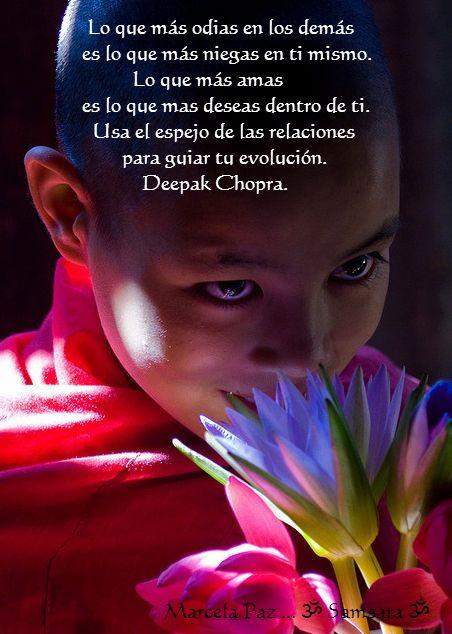 ... Lo que más odias en los demás es lo que más niegas en ti mismo. Lo que más amas es lo que más deseas dentro de ti. Usa el espejo de las relaciones para guiar tu evolución. Deepak Chopra.