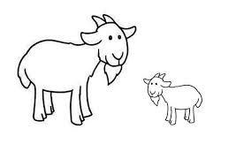 Afbeeldingsresultaat voor we hebben er een geitje bij lessuggesties