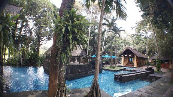 Swimming pool @ Novotel hotel, Bogor, Indonesia