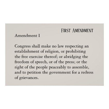Best  Freedom Of Speech Constitution Ideas On