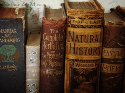 7 Reasons Why It Is Important to Study History ...