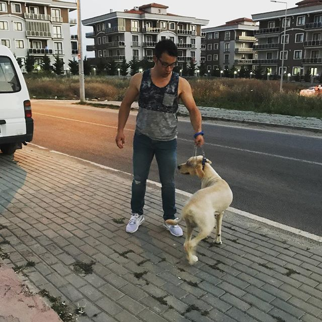 Bobi Boby #dog #adoteumamigo #projetoamigosdobem10 #인스타그램 #일상 #멍스타그램 #강아지 #반려견 #ポメラニアン #포메 #포메라니안 #愛犬 #pom #pomeranian #dogstagram #犬 #소통 #cute #likeforlike #사지말고입양하세요 #japanesespitz #happy #instadaily #instagram #2some #minipig #puppy #pet #piggy #friday