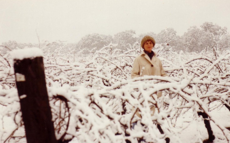 Chris Thomson, Viv's wife, in our Concongella Vineyard after snow fell in Great Western in 1981