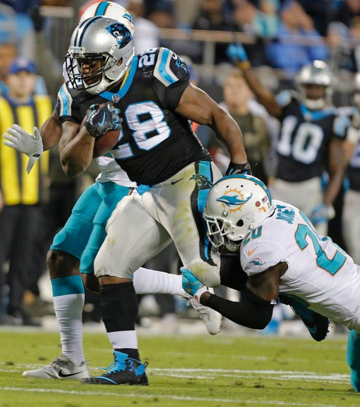 Panthers Mobile: Dolphins Panthers Football Jonathan Stewart, Reshad Jones | http://yi.nzc.am/eiAg4x