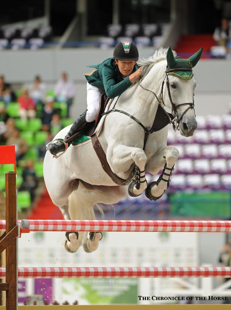 Photos by Lisa Slade and Mollie Bailey Ireland's Bertram Allen, 19, and Molly Malone V turned in the fastest clear round on the first day of show jumping at the Alltech FEI World Equestrian Games. | The Chronicle of the Horse