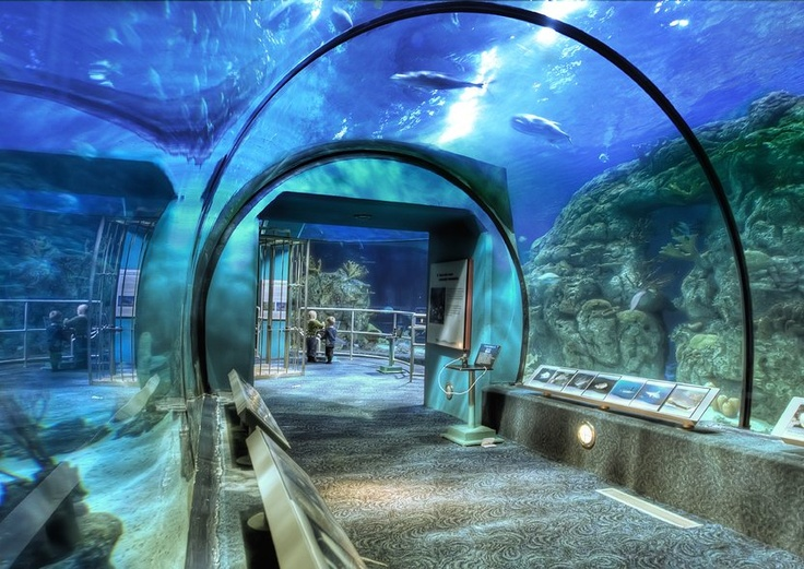 Pretty Attractions Are Space Center Houston Downtown Aquarium Houston Museum Of Natural