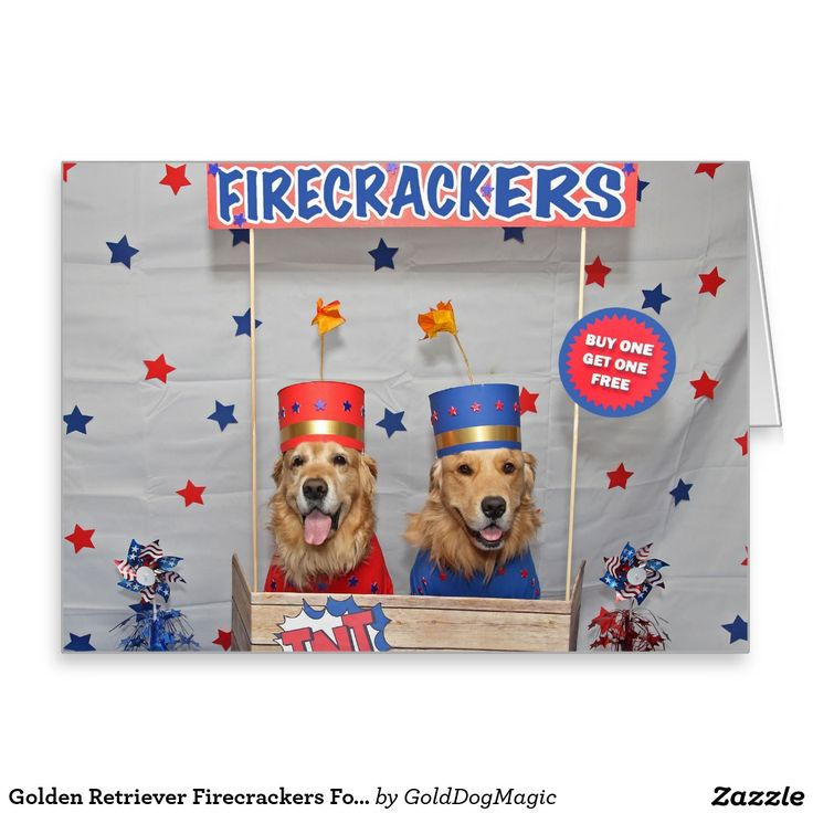 Golden Retriever Firecrackers For Sale Greeting Card
