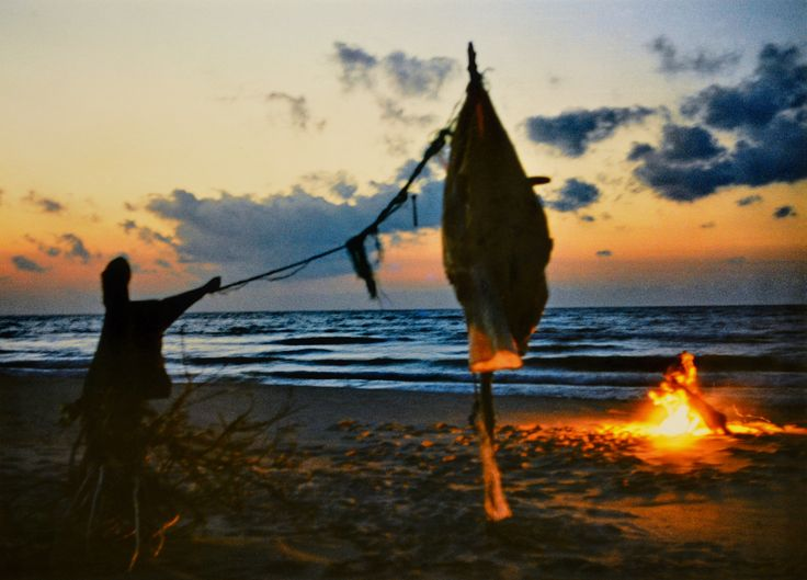 "Yury Ermolenko, ""LAST MONOLOGUE OF THE JAPANESE ACTOR"" (Land art project ""Baltic - Hel""), 2003, Hel Peninsula, Baltic Sea, Poland #YuryErmolenko #юрийермоленко #ЮрийЕрмоленко #yuryermolenko #юрiйєрмоленко #ЮрiйЄрмоленко #юрийермоленкохудожник #landart #balticsea #sea #sky #amazing #RapanStudio #photo #photography #metaphysics #metaphysical #philosophy #installation #лэндарт #инсталляция #art #contemporaryart #modernart #magic #texture #monologue #japaneseactor #poland #hel #helpeninsula…"